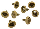 Windshield and Trunk Molding Mounting Screws - 1968-72 Oldsmobile Cutlass/442